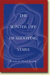 The Winter Life of Shooting Stars - book cover